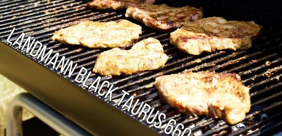 Wideotest | Landmann Black Taurus 660. To może być ostatni grill w Twoim życiu